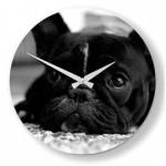 horloge chien bouledogue