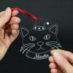 boule de noel cadeau pour chat